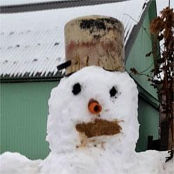 Улыбка снеговика